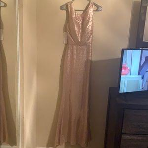 Bari Jay champagne gown